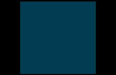 Swan Leisure logo