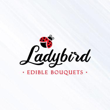 ladybird logo design